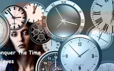 Time Thieves Slowing Your Business Growth on the Internet?