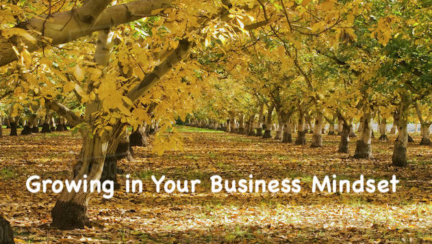 Growing Walnuts and Your Business