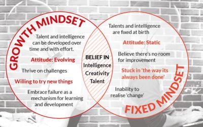 Mindset Exercise… Do you have a Growth Mindset?