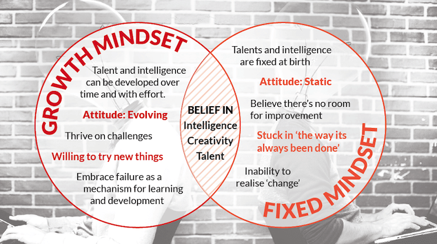 Mindset Exercise… Do you have a Growth Mindset?