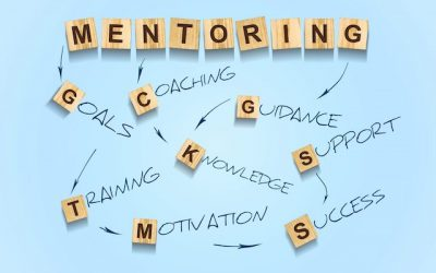 Is a  Mentor Needed?